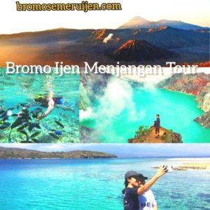 Bromo Ijen Menjangan Tour